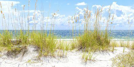 St Pete´s Beach i Florida, USA.
