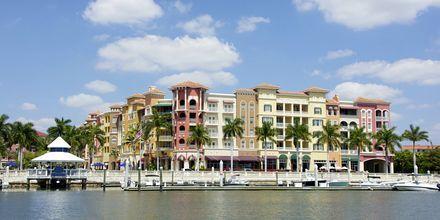 Naples i Florida.