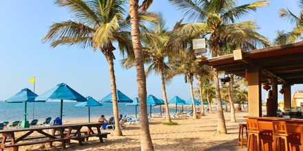 Strand i Ras Al Khaimah,  Förenade Arabemiraten.