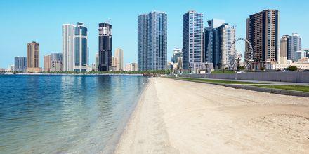 Strand i Sharjah.
