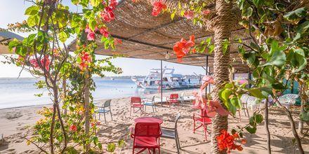 Stranden vid hotell Fort Arabesque Resort i Makadi Bay, Egypten.