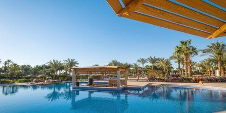 Poolområde på hotell Fort Arabesque Resort, Spa & Villas i Makadi Bay, Egypten.