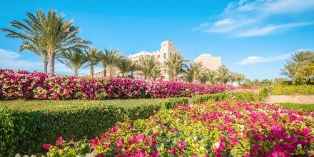 Lyxiga hotell Fort Arabesque Resort i Makadi Bay, Egypten.