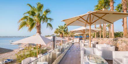På baren Club 159 på hotell Fort Arabesque Resort, Spa & Villas bjuder på vackra utsikter över havet.