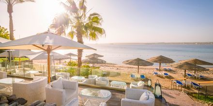 Stranden vid hotell Fort Arabesque Resort, Spa & Villas i Makadi Bay, Egypten.