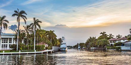Kanalsystemet i Fort Lauderdale går att upptäcka på flera sätt, men mest populärt är det att ta en båttaxi.