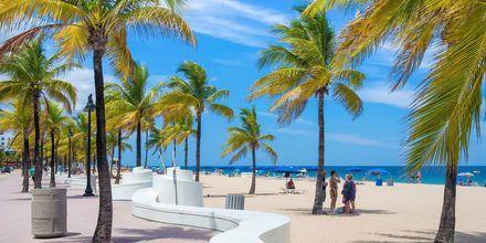 Stranden i Fort Lauderdale sträcker sig längs flera kilometer.