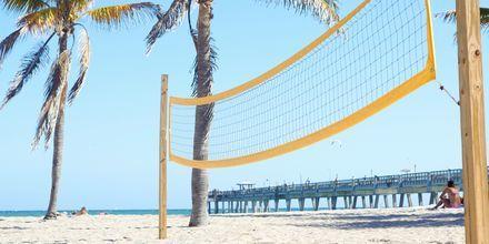 Dania Beach i Fort Lauderdale är en familjevänlig och populär strand.