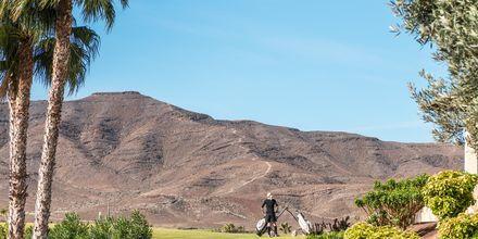 Golf på Playitas Resort.