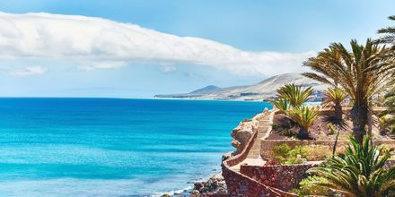 Fuerteventuras vackra kustlinje.