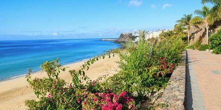 Jandia på Fuerteventura.