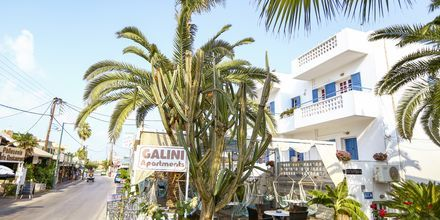 Hotell Galini i Malia  på Kreta.