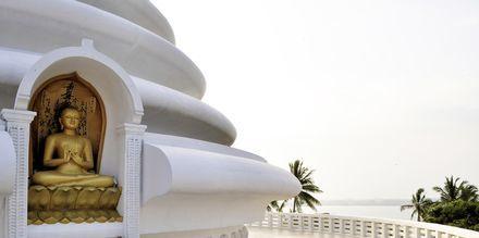 Japanese Peace Pagoda i Rumassala söder om Galle, Sri Lanka.