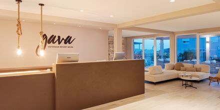 Reception på Gava Waterman Resort Milna på Brac, Kroatien.