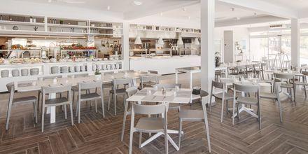Restaurang på Gava Waterman Resort Milna på Brac, Kroatien.