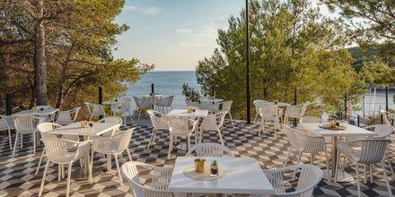 Poolbar på Gava Waterman Resort Milna på Brac, Kroatien.