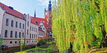 St Catherine Church i Gdansk, Polen.