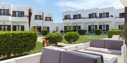 Hotell Geraniotis Beach i Platanias på  Kreta, Grekland.