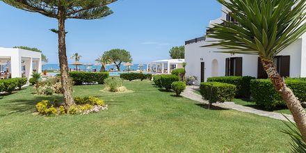 Hotellområde på Geraniotis Beach i Platanias på Kreta.