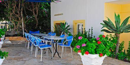 Hotell Gianna på Leros, Grekland.