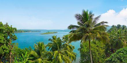 Norra Goa i Indien.