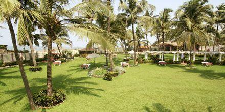 Hotell Goan Heritage i Norra Goa, Indien.