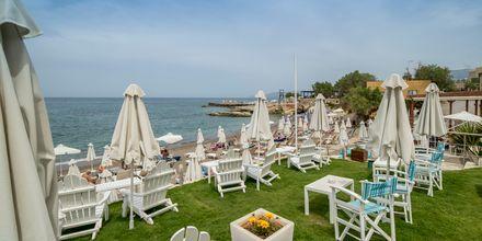 Strandservering, hotell Golden Beach i Hersonissos på Kreta.
