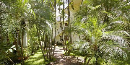 Golden Beach Resort i Ao Nang, Krabi.