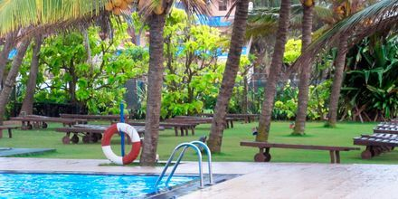 Poolområde på hotell Golden Star Beach i Negombo på Sri Lanka.