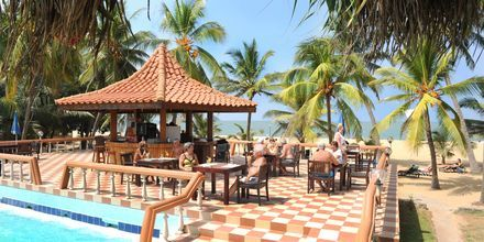 Poolbaren på hotell Golden Star Beach i Negombo på Sri Lanka.