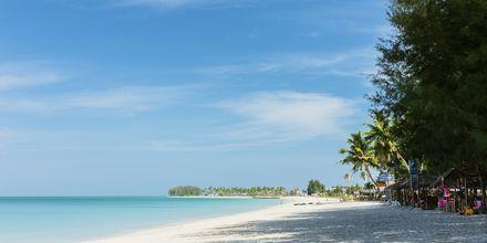 Stranden vid Graceland Khao Lak Resort, Thailand.