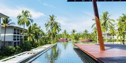 Poolområde på Graceland Khao Lak Resort, Thailand.