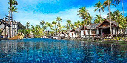 Pool på Graceland Khao Lak Resort, Thailand.