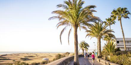 Strandpromenaden i Playa del Inglés på Gran Canaria, Spanien.