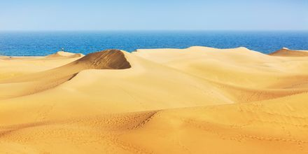 Sanddynerna i Maspalomas på Gran Canaria, Spanien.