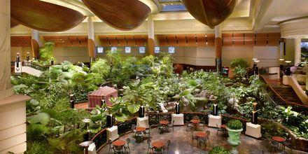 Restaurang Panini på hotell Grand Hyatt, Dubai.