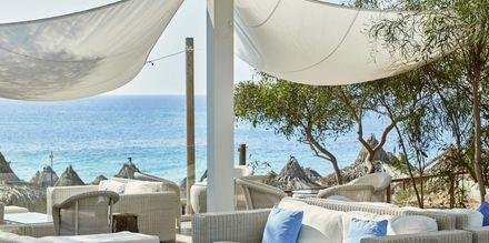 Loungebar på hotell Grecian Bay, Cypern.