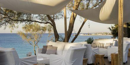 Loungebar på Grecian Sands, Cypern.