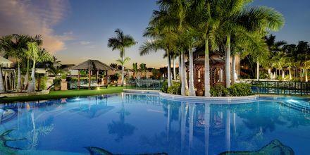 Poolområde på Green Garden Resort i Playa de las Americas, Teneriffa.