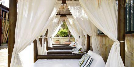 Koppla av i sköna solsängar på Green Garden Resort i Playa de las Americas, Teneriffa.