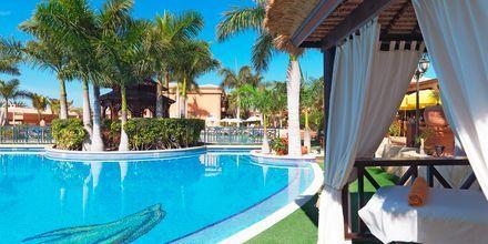 Green Garden Resort i Playa de las Americas på Teneriffa.