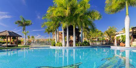 Poolområde på Green Garden Resort i Playa de las Americas på Teneriffa.