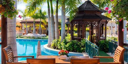 Poolbar på Green Garden Resort i Playa de las Americas, Teneriffa.