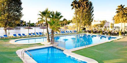Poolen på hotell Grupotel Amapola i Alcudia, Mallorca.