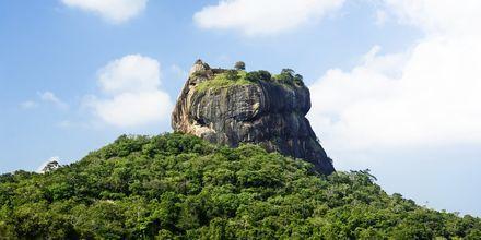 Sigiriya Rock vid Habarana, Sri Lanka.