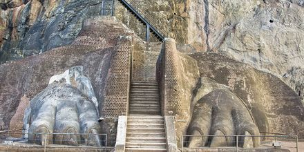 Lejontrappan i Sigiriya på Sri Lanka.