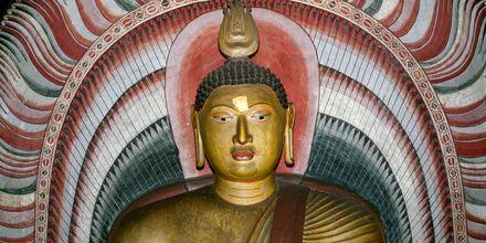 Det gyllene templet i Dambulla, Sri Lanka.