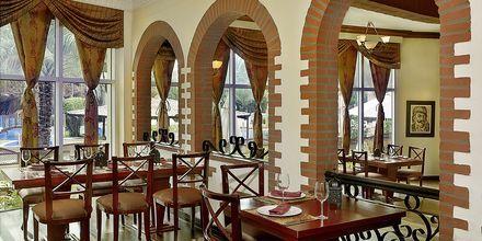 Restaurang Al Basha på hotell Habtoor Grand Resort, Autograph Collection i Dubai.