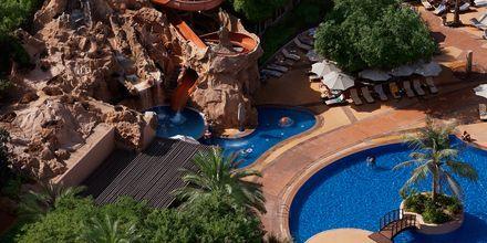 Barnpoolen på Habtoor Grand Resort, Autograph Collection i Dubai, Förenade Arabemiraten.