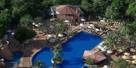 Poolen på Habtoor Grand Resort, Autograph Collection i Dubai, Förenade Arabemiraten.